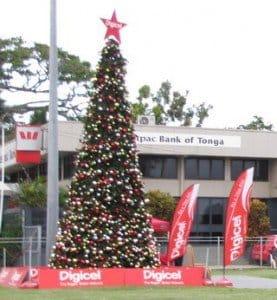 tonga tree